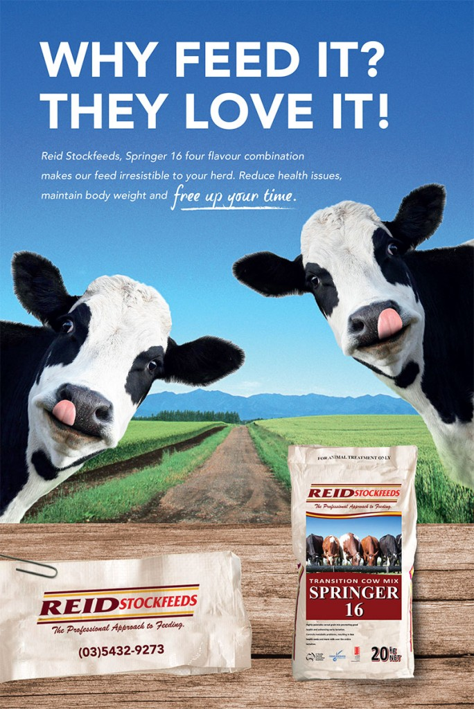 Why Feed It? They Love It!_Dairy Direct_RSF 072015